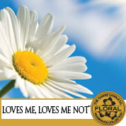 Loves Me, Loves Me Not